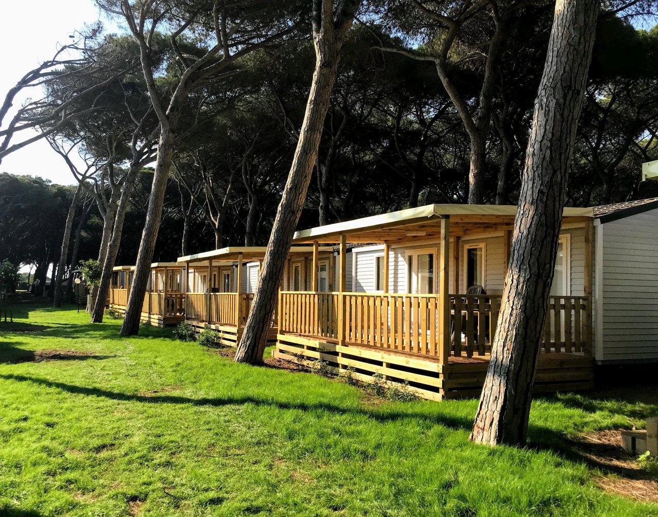 2a. California Camping Village - Montalto di Castro (VT)